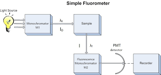 Lab 4 Molecular Fluorescence Chemistry Libretexts