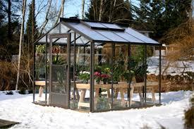 8 Reasons Everyone Should Buy A GreenhouseBuy A Greenhouse For Backyard