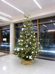 Office Christmas Tree 10ft White And Gold Flowers By Flourish
