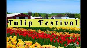 tulipfestival hollandridgefarms njattractions