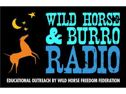 Gayle Hunt (Pres., Central Oregon Wild Horse Coalition) 07/12 by Marti  Oakley | Current Events