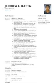 Data Entry Operator Resume Format Sample - UN Mission - Resume and .