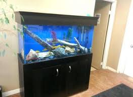 aquarium for office. Cool Home Fish Tank Office Inspirations Best Aquarium For