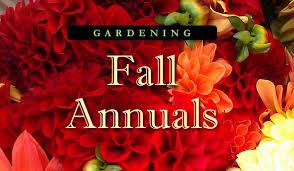 fall garden flowers. Fall Gardening: Annual Flowers Garden