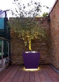 planter lighting. #Recessed #LED #lighting Under #tree #planter In A #roof #garden Planter Lighting N