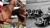Edward F. Cline Hesitating Horses Movie