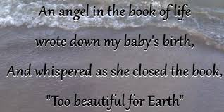 Too Beautiful For Earth Quote Best of Too Beautiful For Earth Healing The Grief