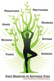 8 Limbs Of Yoga Chart Eight Limbs Of Rajayoga Patanjali Ashtanga Yoga