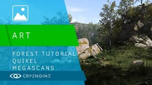 Forest Forest Tutorial Youtube Tutorial Megascans Megascans Quixel Youtube Quixel RwRqIrH6