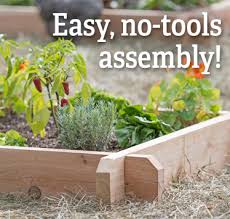 Small Picture Garden Design Garden Design with How to Plant a Raised Garden Bed