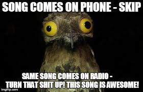 Weird Stuff I Do Potoo Latest Memes - Imgflip via Relatably.com