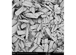 Phenom Prox Desktop Scanning Electron Microscope Ata Scientific