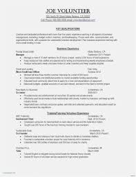 Example Of Professional Resumes 83 Professional Resume Template Word Jscribes Com
