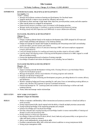 Manager Training Development Resume Samples Velvet Jobs