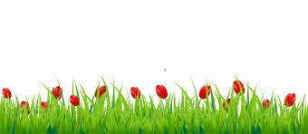 grass png. Plain Grass For Grass Png G