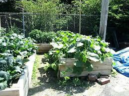 raised garden bed soil mix full image for vegetable garden soil mix building
