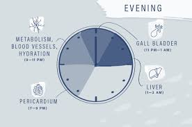 Tcm Time Chart How The Chinese Medicine Clock Affects Your Body Well Good