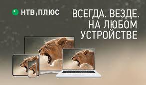 Спутниковое <b>телевидение НТВ</b> Плюс: купить цифровое HD ТВ ...