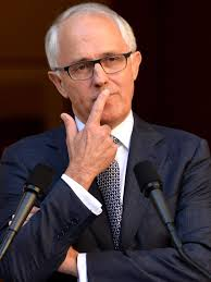Image result for turnbull