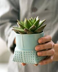 photo 6 of unique ceramic flower pots ideas on wall pockets and planters australia plante wall planter ceramic