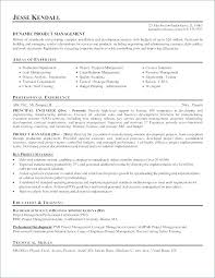 Resume Templates Pages Resume Templates For Mac Cool Resume