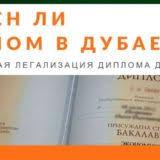 Нужен ли диплом в Дубае Блог Документ  Нужен ли диплом в Дубае