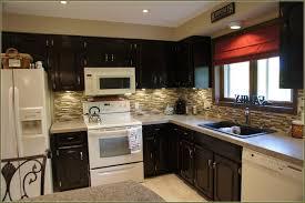 Staining Kitchen Cabinets Darker Kitchen Astounding Gel Stain Kitchen Cabinets Design Idea White