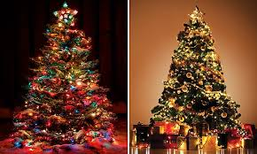 5 Reasons To Put Your Christmas Tree Up In October  Love WednesdayWhen Should You Buy A Christmas Tree