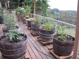 Garden Design Garden Design With Container Gardening Ideas Garden Container Garden Plans Pictures