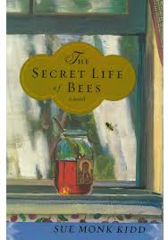 books that defined a generation the secret life of bees the secret life of bees