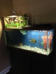 fish tank lighting ideas. turtle penthouse more fish tank lighting ideas