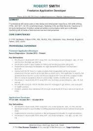 Developer Resume Examples Joefitnessstore Com