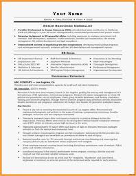 Resume Sample Summary Professional Summary Resume Examples Unique A Great Resume 28