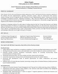business analyst sample resume finance luxury mon essay topics on  gallery of business analyst sample resume finance luxury mon essay topics on macbeth essays on fashion merchandising
