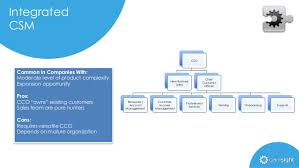Customer Success Management Csm Org Structures By Gainsight