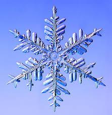 Christmas Snowflakes Pictures Christmas Snowflakes Wordlesstech