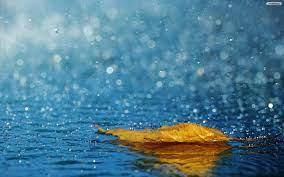 Rain wallpapers, Nature wallpaper ...