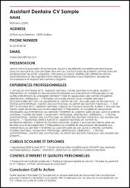 Curriculum Vitae Shqip Download || Suggestions-Fears.ml