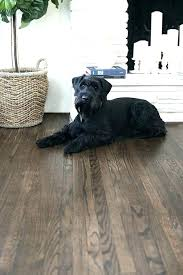 best flooring for pets. Best Flooring For Dogs Hardwood Floors Adorable Pets With .
