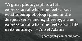 40 Incredible Photography Quotes Icon Photography School Unique Expressing Quotes