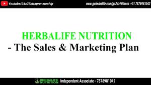 Herbalife Sales Marketing Plan In Hindi