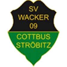 Bildergebnis für KOlkwitzersv Emblem