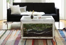 terrarium furniture. furniturebest terrarium coffee table pic 5 good wallpapers 0 furniture t