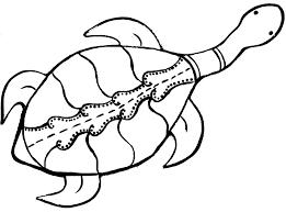 australian aboriginal turtle dot painting animal templatespainting templatesart
