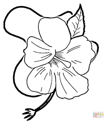 Small Picture Hibiscus Flower coloring page Free Printable Coloring Pages