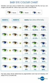 Eye Genetics Chart The Eyes Have It All About Your Babys Eyes And How They