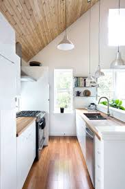 fantastic modern house lighting. Fantastic Modern Galley Kitchen Design With Glamorous Small Pictures Ideas House Lighting G