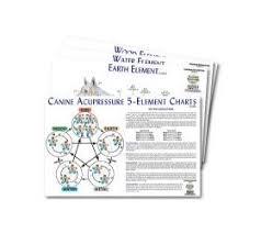 Canine Five Element Meridian Chart Set Of 4 Lfa 92505