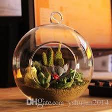 Small Picture Canada 12cm Glass Terrarium Supply 12cm Glass Terrarium Canada