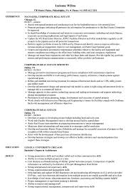 Real Estate Brokerage Resume Summary Commercial Objective